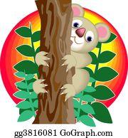 Eucalyptus - Koala Bear