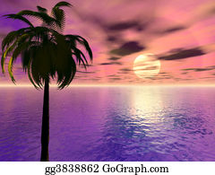 Palm-Tree - Sunset With Palm Tree