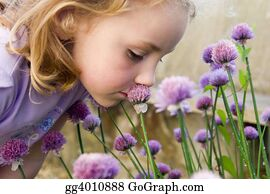 Sense-Of-Smell - Young Girl Smelling Flowers