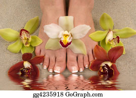 Feet - Orchids And Feet