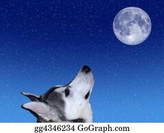 Huskies - Bark At The Moon