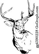 Antler - Deer Reindeer Illustration