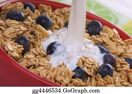 Boysenberry - Bowl Of Granola And Boysenberries And Milk