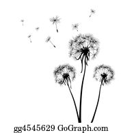 Plant-Life - Dandelions