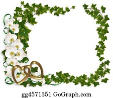 Orchid-Flower - Orchid And Ivy Border Frame