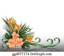 Orange-Border - Tropical Flowers Border Elegant