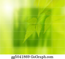 Clematis - Green Mosaic