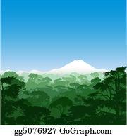 Forest - Forest Landscape