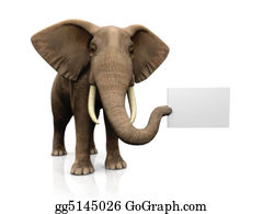 Trunk - Elephant With Sign