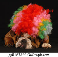 Wig - Dog Clowning Around