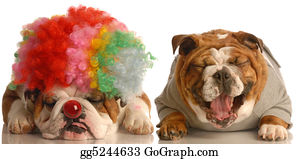 Wig - Two Dogs Clowning Around