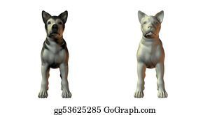 Huskies - Malamute Dog 3d Model
