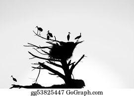 Birds-On-The-Tree-Silhouette - Storks Nest