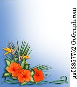 Orange-Border - Tropical Hibiscus Flowers Border