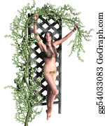 Vine - Woman Holiding A Vine