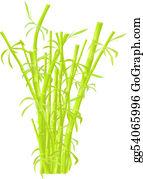 Plantation - Bamboo Plantation