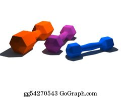 Dumbbells - Isolated Multicolor Dumbbells On White Background