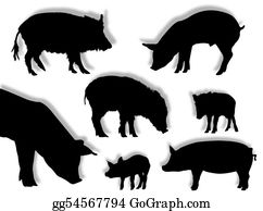 Boar - Pig Silhouettes
