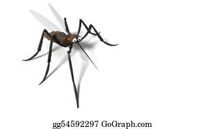Mosquito - 3d Mosquito
