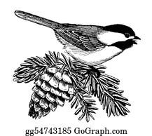 Bird-Feeder - Black-Capped Chickadee