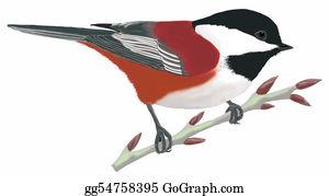 Bird-Feeder - Chestnut-Backed Chickadee