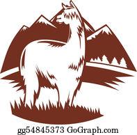 Alpaca - Suri Alpaca With Mountains In The Background