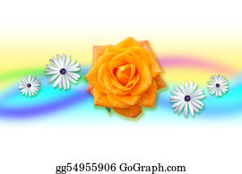 Cancun - Orange Rose