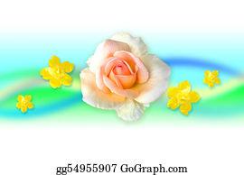 Cancun - White Flower