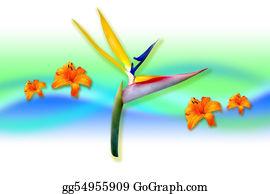 Cancun - Paradise Bird Flower