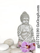 Orchid-Flower - Buddha And Orchid