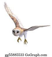 Jaw - Barn Owl Bird. 3d Rendering With Clipping Path And Shadow Over White
