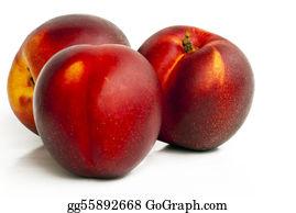 Nectarine - Three Red Nectarines Isolated On White - A Closeup.