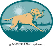 Trained - Rained Retriever  Dog With Bird On Wetland  Set Inside An Ellipse.