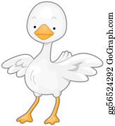Poultry - Cute Goose