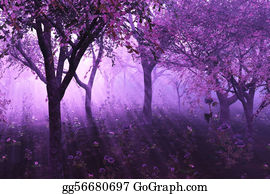 Flowering-Trees - Lavender Forest