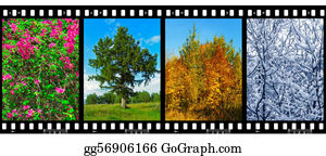 Four-Seasons - Nature Seasons In Film Frames (my Photos)