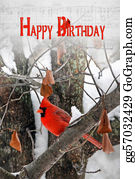 Cardinal-Bird - Birthday Bird