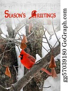 Cardinal-Bird - Season's Greetings