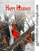 Cardinal-Bird - Holiday Greetings