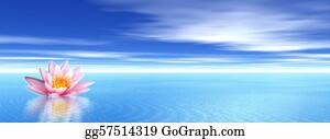 Water-Well - Lily Flower In Blue Ocean