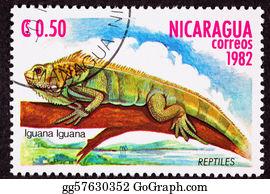 Horned-Lizard - Canceled Nicaraguan Postage Stamp Green Iguana Lizard Branch Mar