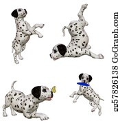 Barking-Dog - Dalmatian Puppies2