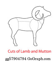 Lamb - Cuts-Of-Lamb-And-Mutton