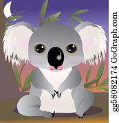 Eucalyptus - Koala