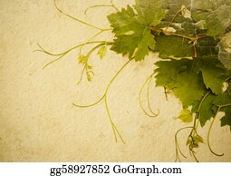 Grape-Leaf - Abstract Vintage Style Background To Design A Wine List