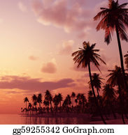 A-Palm-Tree-Sign-In-Yellow-And-Black - Tropical Island