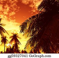 A-Palm-Tree-Sign-In-Yellow-And-Black - Beautiful Sunset