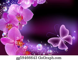 Orchid-Flower - Orchid And Butterfly
