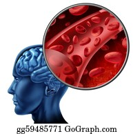 Health-Care - Blood Cells In The Brain