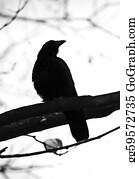 Birds-On-The-Tree-Silhouette - Crow Silhouette